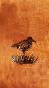 "Copper Cabinet Panel Song Bird 36"" x 16"""